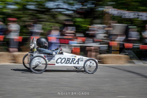 MS Cobra
